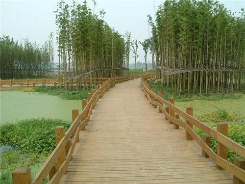 徐州防腐木